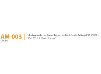Curso Online De Estrategias En Implementación De Gestión De Activos