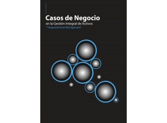 SERIE_Management of Assets from the stage of the Design, Direction and project management